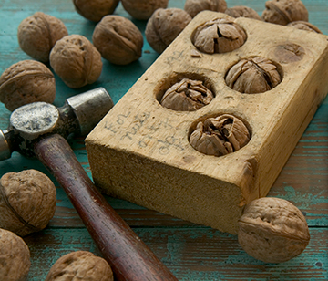 Walnut Cracker cracking walnuts