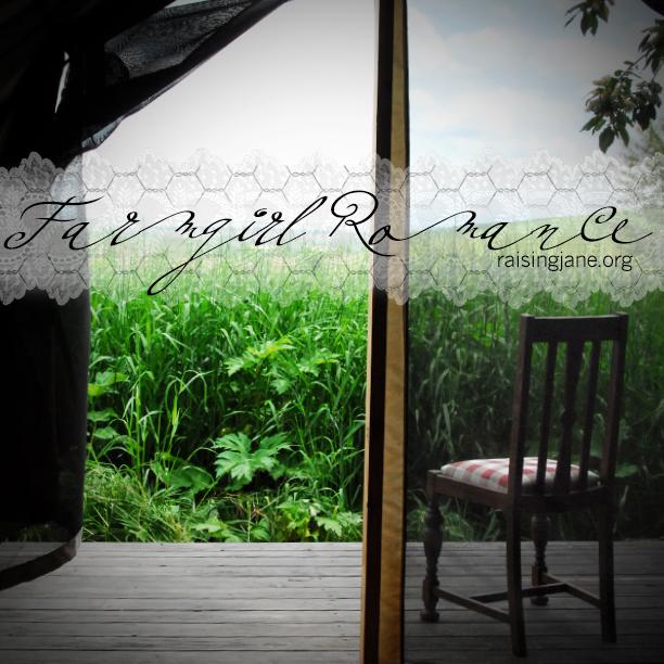 farm_romance-1167