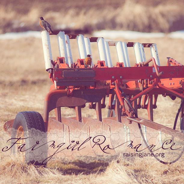 farm_romance-5139