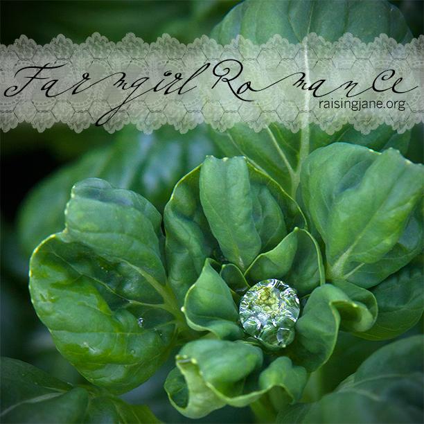 farm_romance-6931