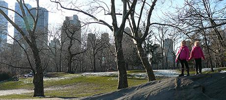 Central Park Rock