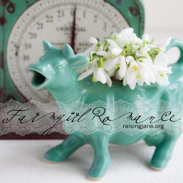 farm_romance-8443