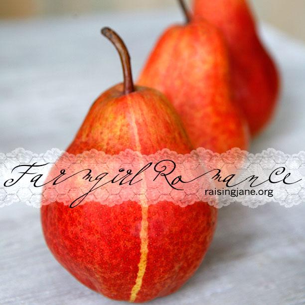 farm_romance-9354