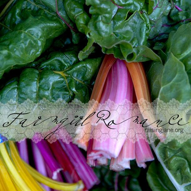farm_romance-chard