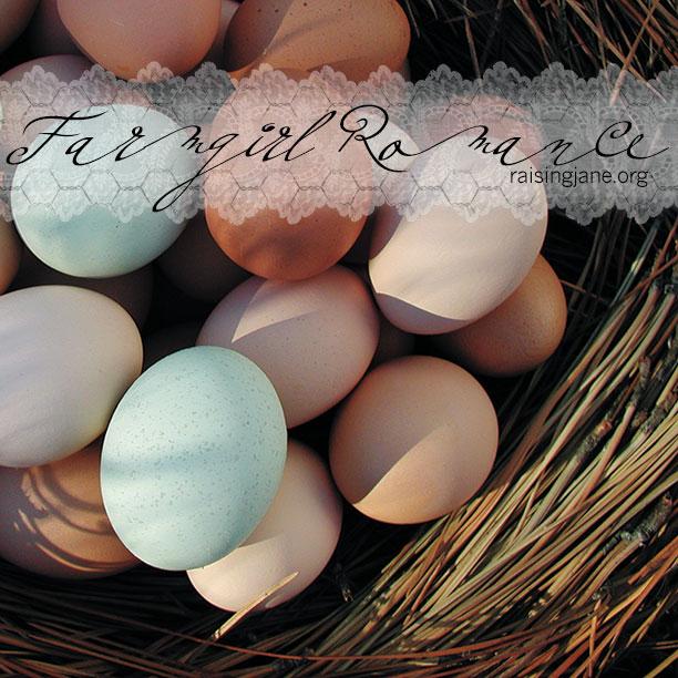 farm_romance-eggs