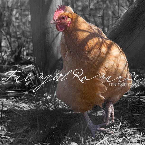 farm_romance-0208
