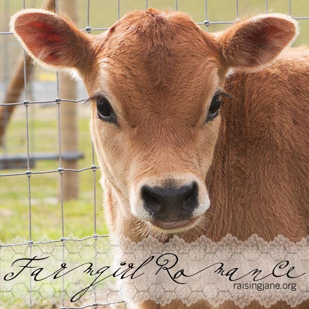 farm_romance-0861