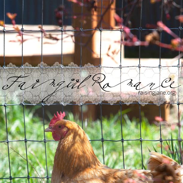 farm_romance-10223