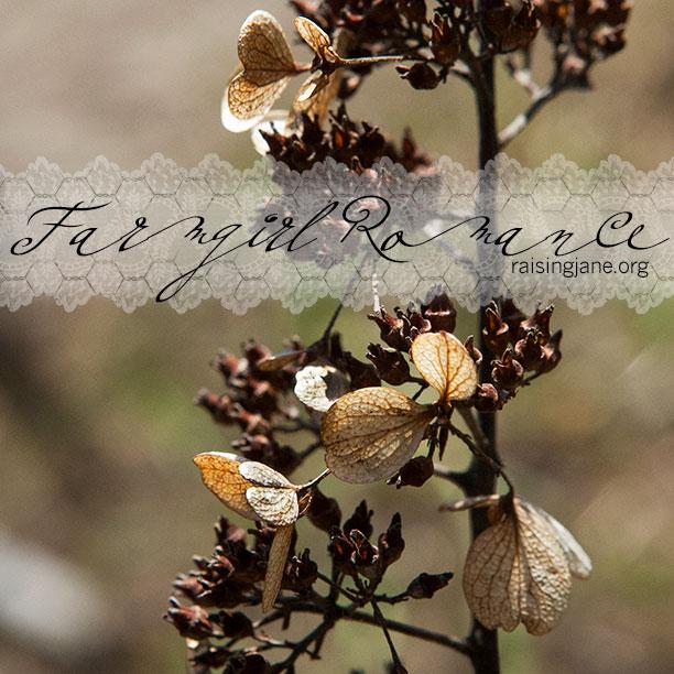 farm_romance-1039