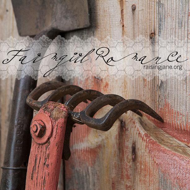 farm_romance-4412