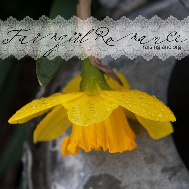 farm_romance-4428