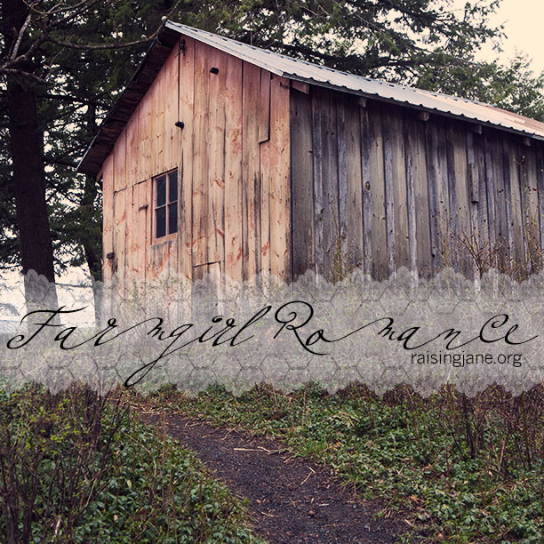 farm_romance-4434