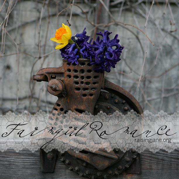 farm_romance-4536