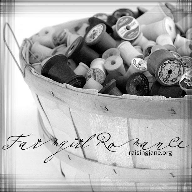 farm_romance-6974