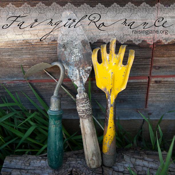 farm_romance-1557