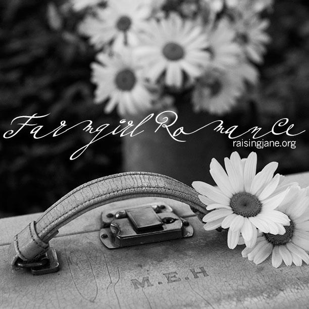 farm_romance-3143