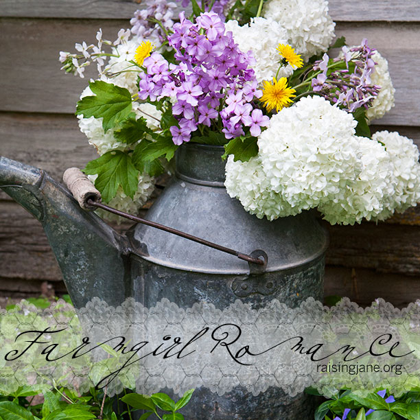 farm_romance-6332