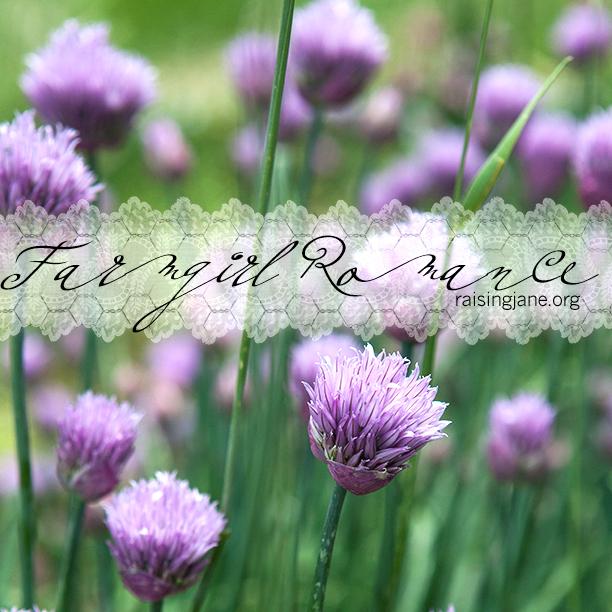 farm_romance-0644