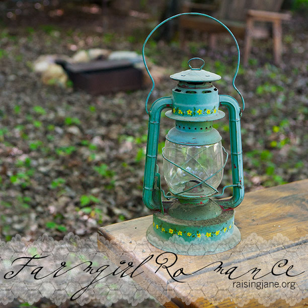 farm_romance-3485