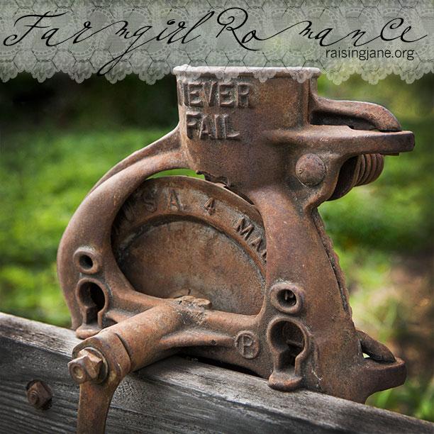 farm_romance-3971