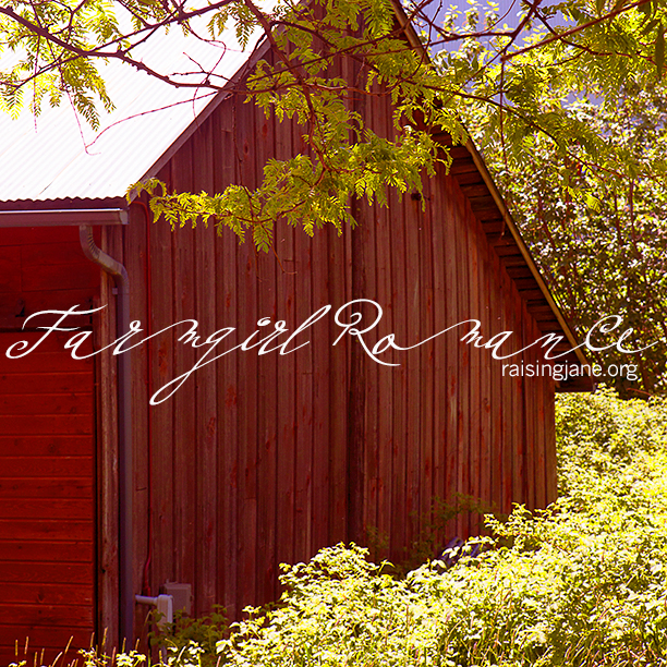 farm_romance-9206