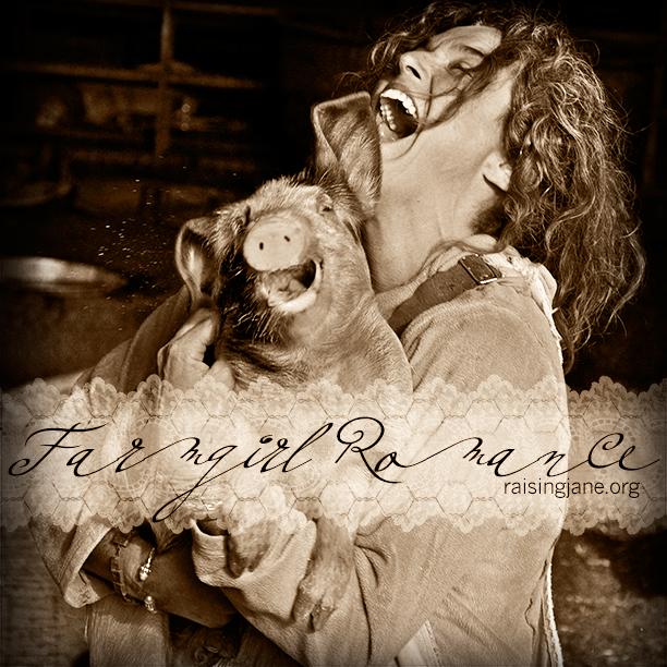 farm_romance-1234