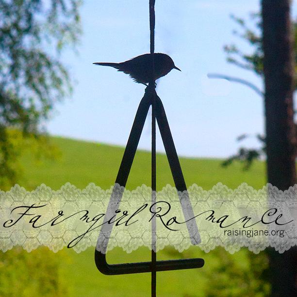 farm_romance-16747
