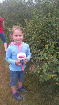 Emma picking berries