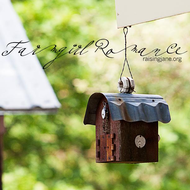 farm_romance-7534