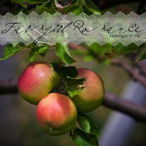 farm_romance-9435