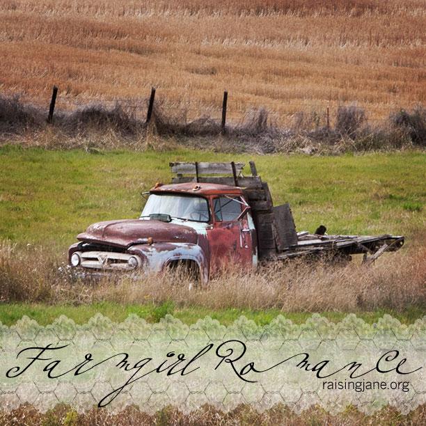farm_romance-0461
