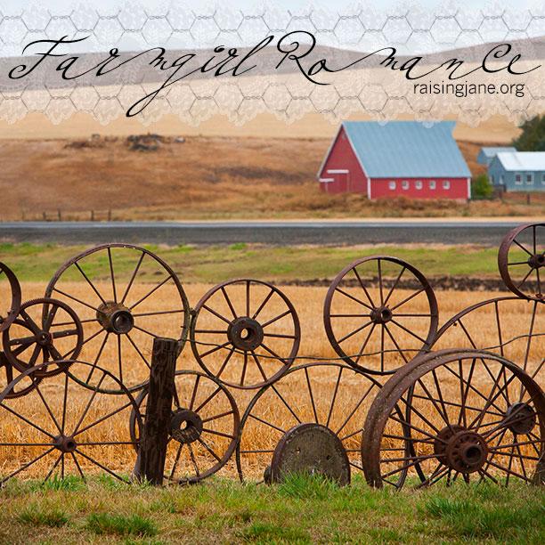 farm_romance-0601