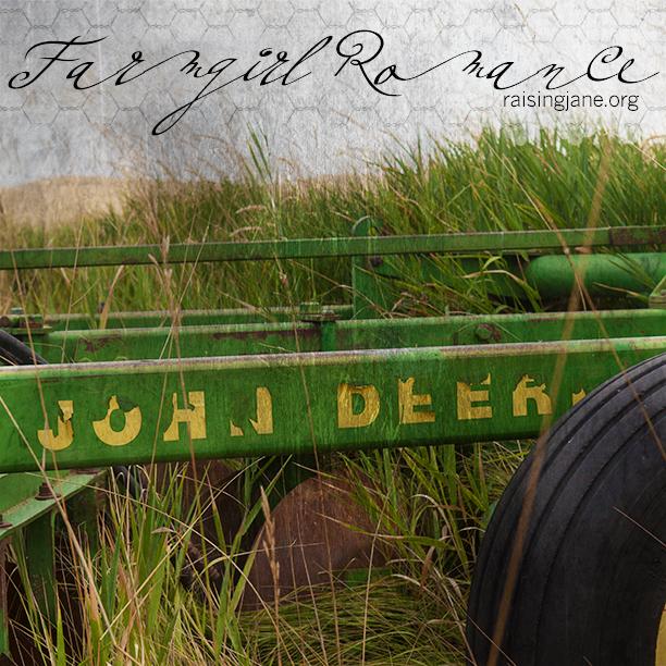 farm_romance-9752
