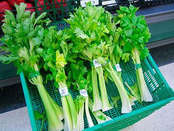growing_jane-celery1