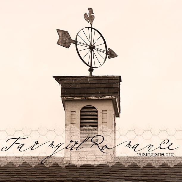 farm_romance-0631