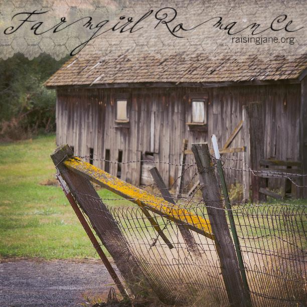 farm_romance-0675