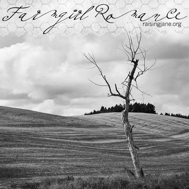 farm_romance-0694