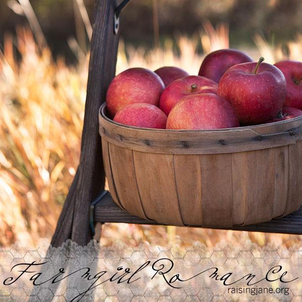 farm_romance-3960