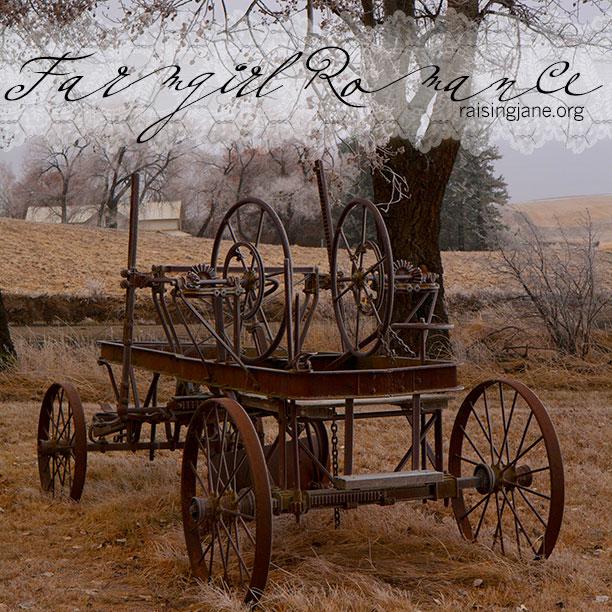 farm_romance-7682