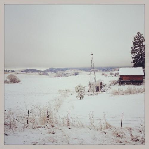 Photo Nov 04, 8 35 18 AM