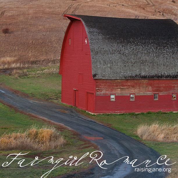 farm_romance-4379