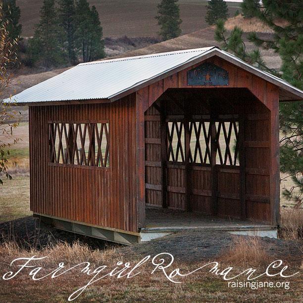 farm_romance-4514