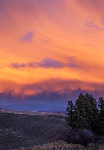 sunset-4614