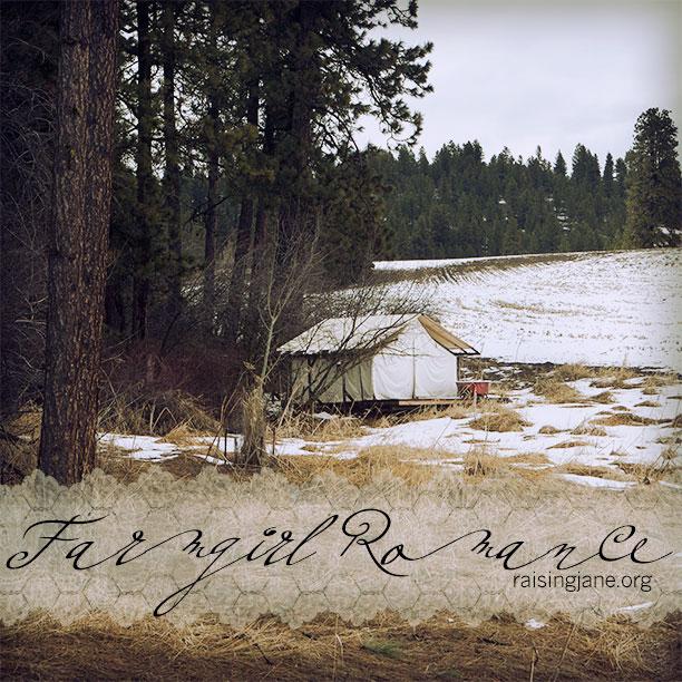 farm_romance-3564