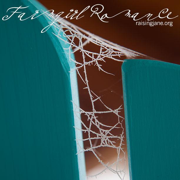 farm_romance-9513