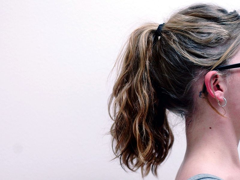 800px-Ponytail_facing_right