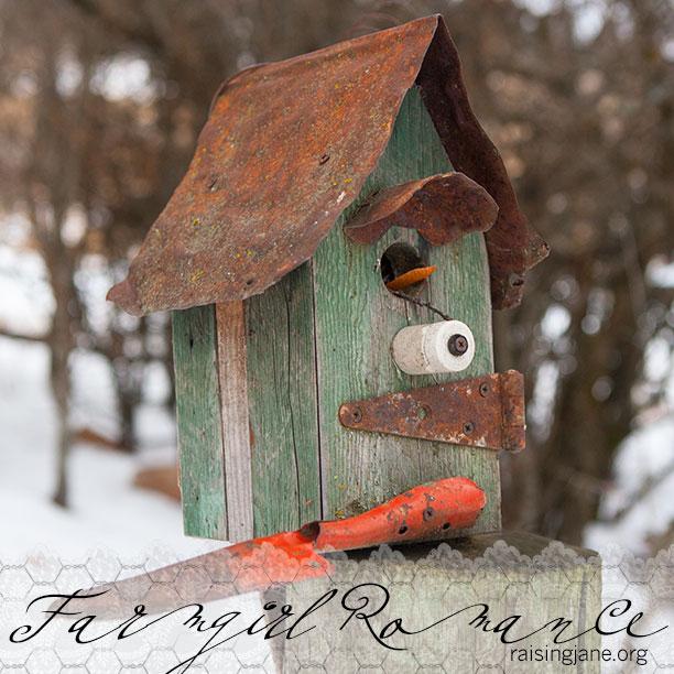 farm_romance-2482