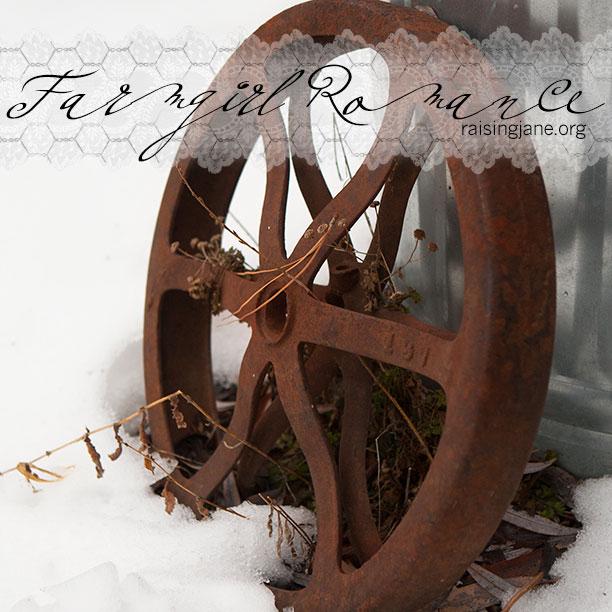 farm_romance-2490