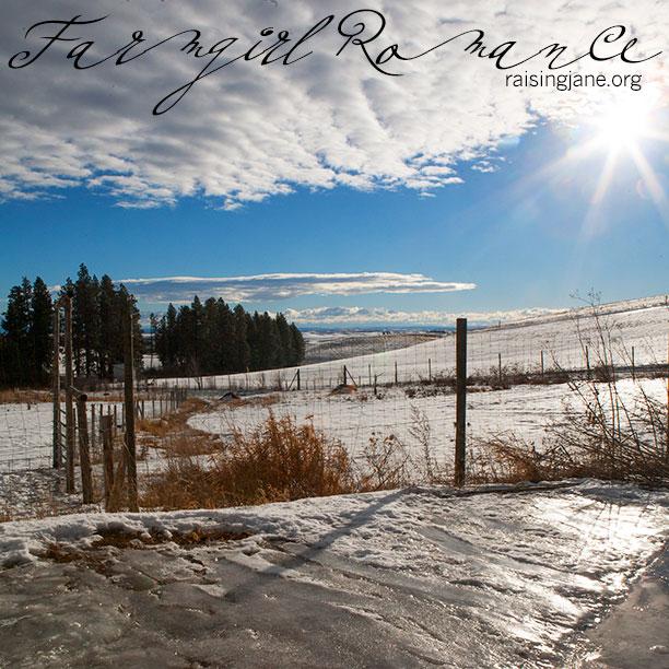 farm_romance-2501