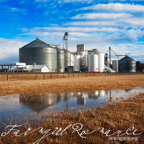 farm_romance-2601
